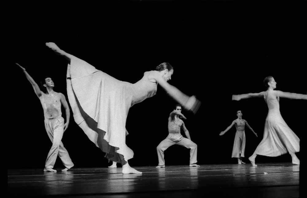 Foto von Tänzern – Wenn die Website zu Tanzen anfängt – zumindest in den Google-Suchergebnislisten. Dann hat ein Algorithmus-Update den Takt neu angegeben.